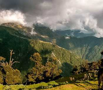 Exclusive Himachal Package in 8 Days with economic Hotels