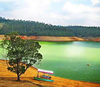 Ooty Tour Package in 4 Days